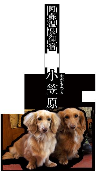 阿蘇温泉宿 小笠原