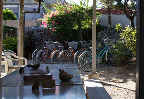 中庭&レンタル自転車の写真